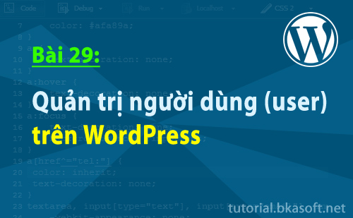 Bài 29: Quản trị người dùng (users) trên WordPress